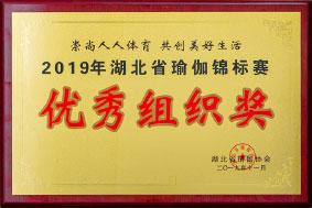 2019年湖北瑜伽锦标赛 优秀组织奖